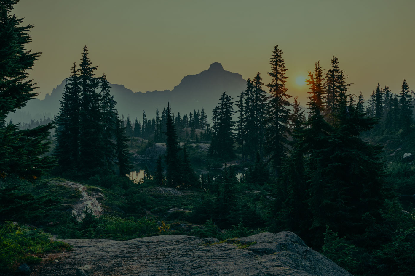 Tree-filled mountainscape at sunset